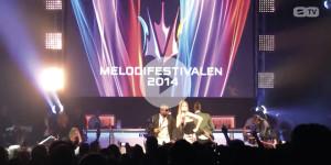 Zero_TV_Melodifestivalen_Final_2014
