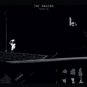 The Amazing -Picture You, omslag