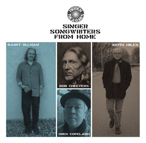 V/A - HiddenTreasures: Singer Songwriters From Home, omslag