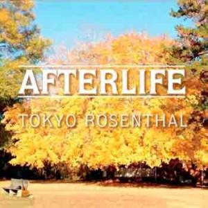 Tokyo Rosenthal -Afterlife, omslag