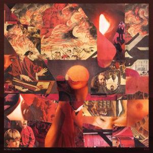 Echo Bloom -Red, omslag